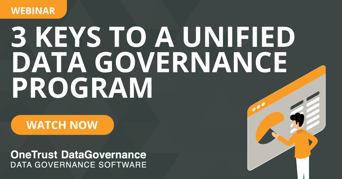 data governance program