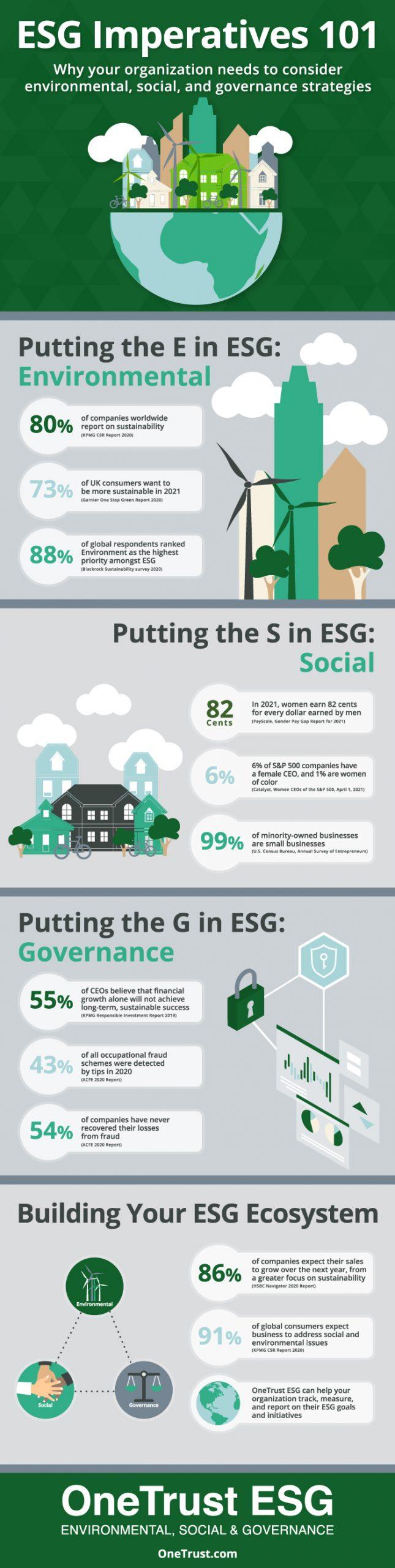 ESG 101 Infographic
