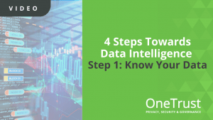 Data Intelligence Know Your Data